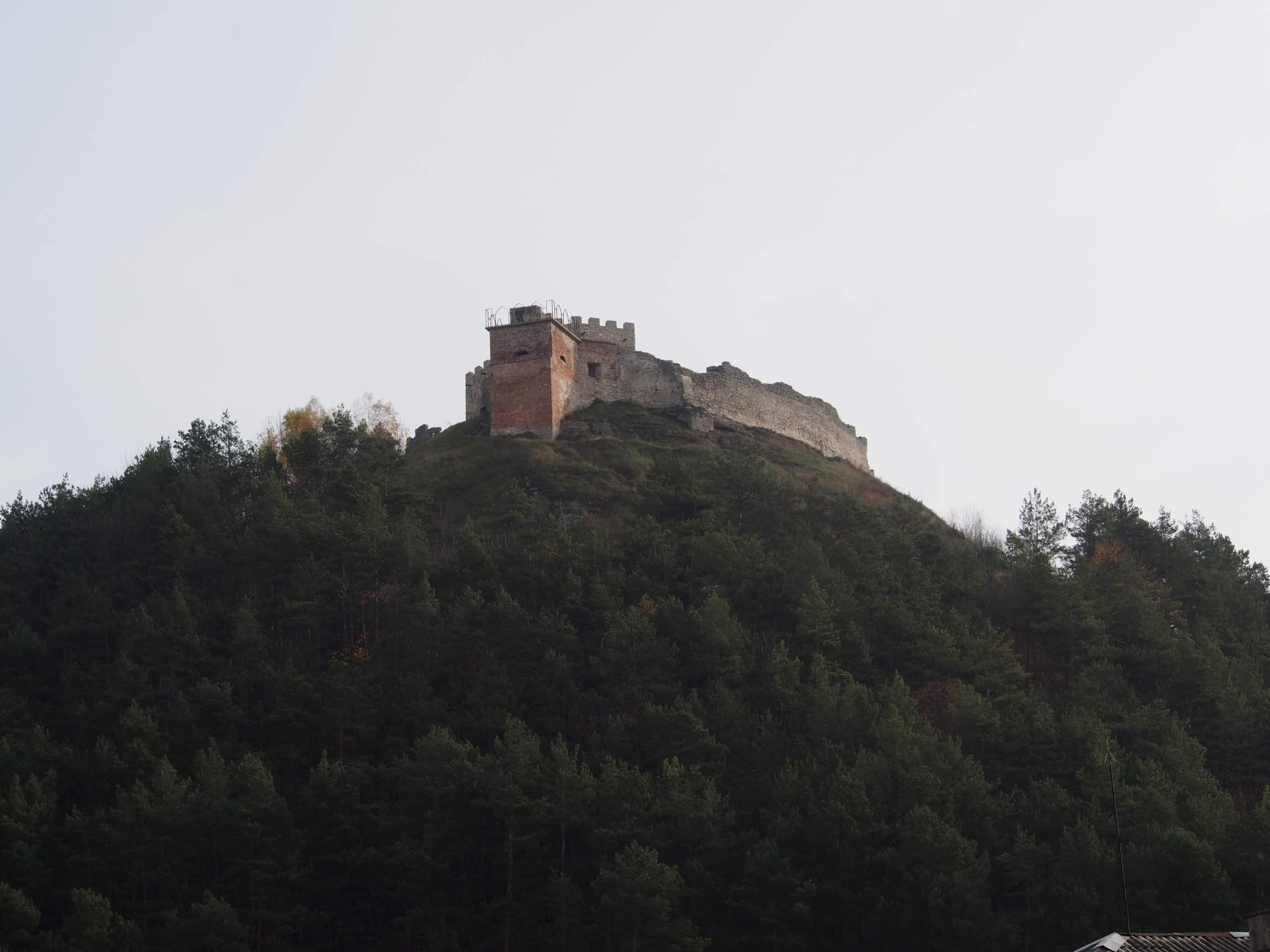 Burg über Kamenez.
